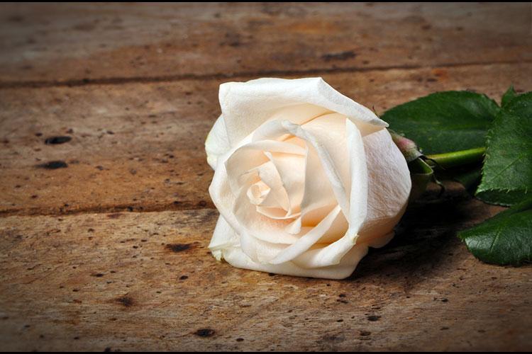 förslag på minnesord vid begravning