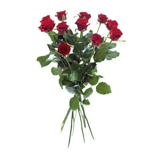 vad betyder antalet röda rosor