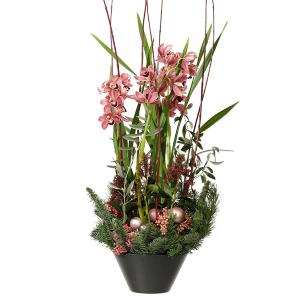 Lyxplantering med orkidé